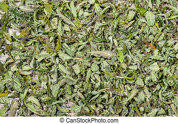 Texture from pieces of cannabis buds and leaves flat lay -...
