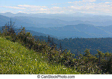 Smoky Mountains