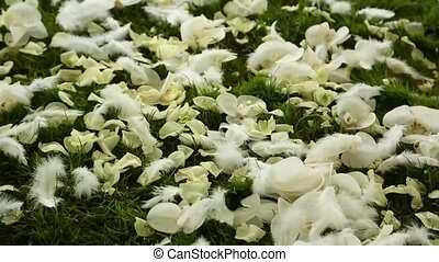 Wedding petals on the grass