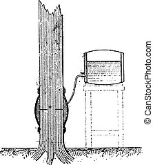 Injection of a standing tree by using the buoyancy of the...
