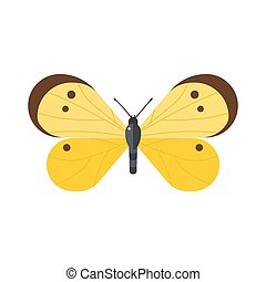 Cute butterfly vector isolated on white - Cute flat...