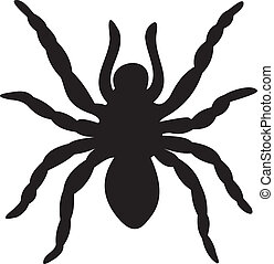 pająk, Wektor