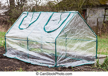 Mini greenhouse for growing seedlings is covered with...