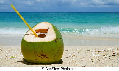 Coconut on a sand of the tropical beach - Ready to drink...