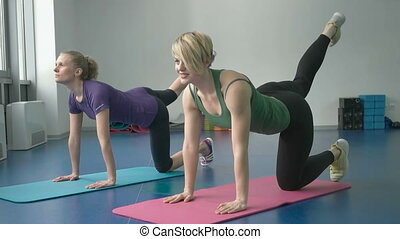 sporty women doing gymnastic exercises or exercising in...