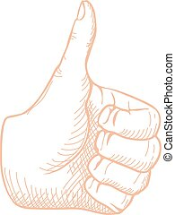 Hand Drawn Thumbs up Vector - Hand Drawn Thumbs up isolated...