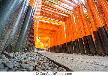 Torii gates in Fushimi Inari Shrine, Kyoto - Ultra wide...