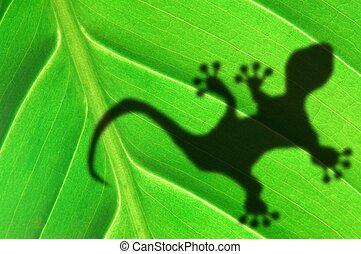green jungle leaf and gecko - green jungle leaf with gecko...