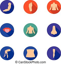 Part of body set icons in flat style. Big collection of part...