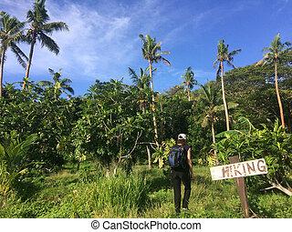viaggi, donna, terreno, giovane, tropicale, escursioni