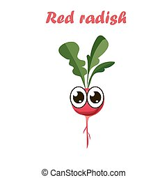 vector illustration of red radish - Very high quality...