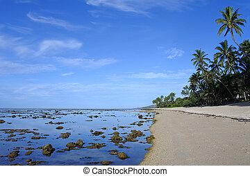 Coral Coast Fiji - Landscape of a beach in the Coral Coast,...