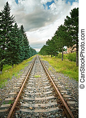 Railway track in perspective with trees on sides