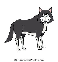 wolf cartoon icon with flag of canada over white background....