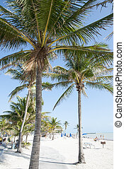 Key West Beaches - One of the beaches in Key West town...