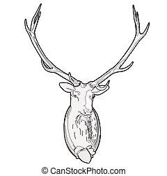Mounted deer head. Stuffed stag, monumental antlers....