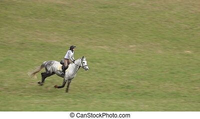 Jockey on Horse in Gallop at the competition