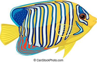 Bright tropical fish isolated on white background. Vector...