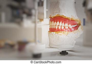 Dental Plate - Dental plate on dental equipment inside...
