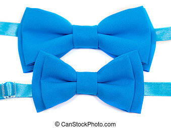 Blue bow tie isolated on white background. Big and small for dad  child.