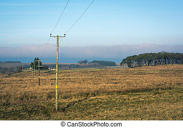 Telegraph poles in countryside - Telegraph poles stretch...