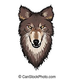 Gray Wolf Head - Gray wolf head with sharp teeth and angry...