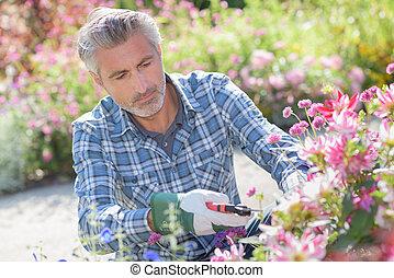 Gardener tending flowers