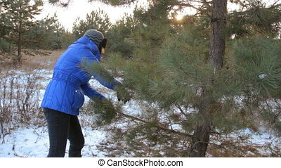 Woman cuts off the branches by pruner. With sun on a...