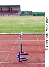 Athletism hedge isolated in a stadium
