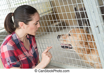 dedicated girl training dog in kennel