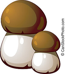 Ceps - Vector illustration of fungi isolated on a white...