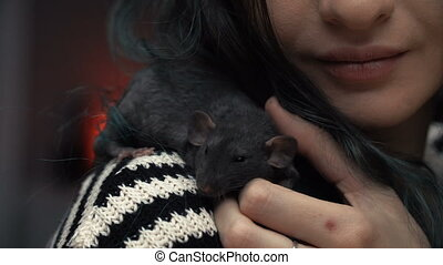 Beautiful lovely girl holds a hand a small home little pet brown mouse close up. She pats her kisses and smiles. Young woman with pet rat.