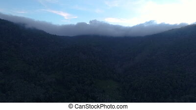 Tropical jungle in the cloud - Aerial , the bird's-eye view...
