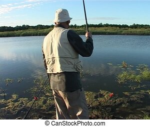 crucian fishing lake in the summer - crucian caught on rod...