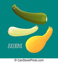 Zucchini or courgette vegetables set. Different kinds of...