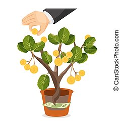 Money tree with golden coins. Assets useful or valuable thing