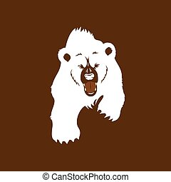 Angry Grizzly Bear - Angry grizzly bear, walking showing...