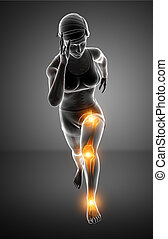 Female Leg joint pain - 3d Illustration of Women Leg joint...