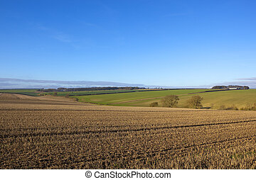 yorkshire wolds agriculture - a hillside straw stubble field...