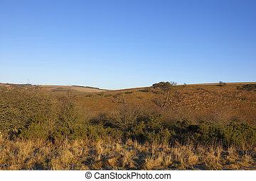 yorkshire wolds landscape - golden winter yorkshire wolds...