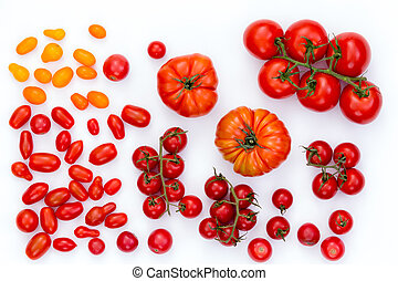 Assorted raw tomatoes on white background - Top down view on...