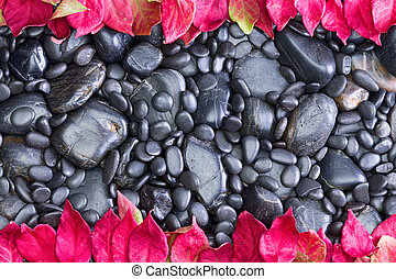 Polished Black River Rocks Bordered by Red Leaves - High...