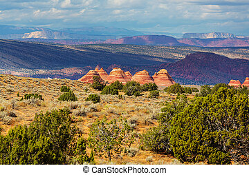 South coyote - Coyote Buttes of the Vermillion Cliffs...
