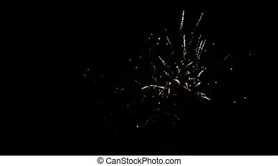 Fireworks In Night Sky - Fireworks in bright colours in the...