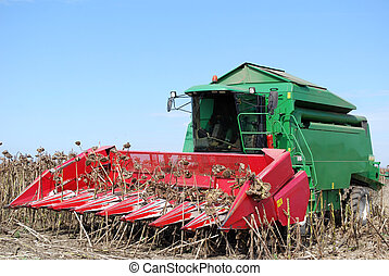 combine on sunflower harvest