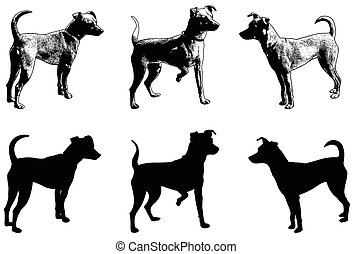 silhouettes and sketch illustration of mini pincher dog -...
