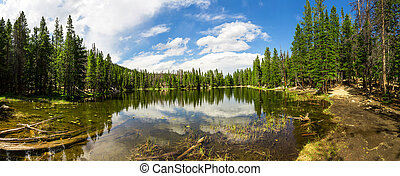Evergreen woods around lake of Estes Park panorama, Colorado...