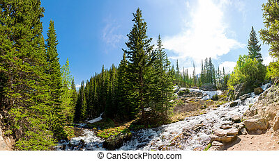 Mountain river against evergreen woods panorama at Estes...