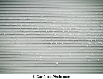 metal shutters - the closed metal shutters of the shop...