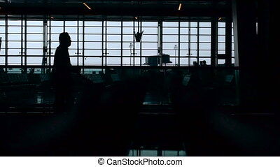 Airport. The passing people. Panoramic windows. Passengers with suitcases go for the flights. Nearby waiting room.